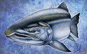 Salmon Drawings Posters - Coho Salmon Poster by Nick Laferriere