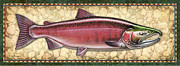 Coho Framed Prints - Coho Salmon Spawning Panel Framed Print by JQ Licensing