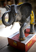 Kiddie Posters - Coin Operated Elephant Poster by Marilyn Hunt