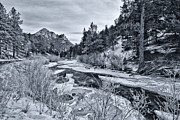 Holiday Cards Posters - Cold Colorado Creek Poster by Darren  White