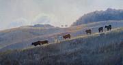Steven Heyen - Cold Cow Morning