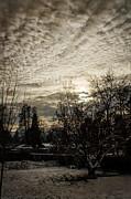 Mick Anderson - Cold December Dusk