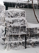 Snowstorm Framed Prints Prints - Cold Lobster Trap Print by Robert Nickologianis