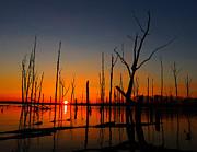 Raymond Salani III - Cold Morning Sunrise