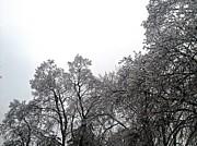 Joseph Yarbrough - Cold Outside