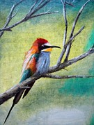 Colibri Paintings - Colibri by Lefteris Skaliotis
