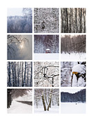 Wintry Posters - Collage February - Featured 3 Poster by Alexander Senin