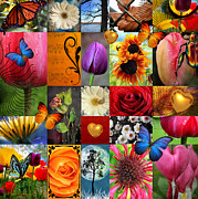 Petal Digital Art Prints - Collage of happiness  Print by Mark Ashkenazi