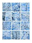 Assemblage Posters - Collage Winter Snow Forest Poster by Alexander Senin