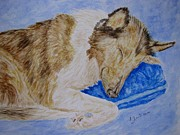 Collie Painting Framed Prints - Collie Painting Framed Print by Annie Zeno