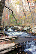 Heber Springs Prints - Collins Creek Print by Heather Wroten