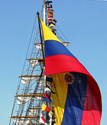 Ann Johndro-Collins - Colombian Flagship...