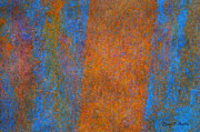 Color Abstraction Xiii Print by David Gordon