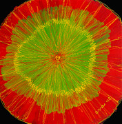 Reverse Acrylic On Plexiglas Glass Art - Color burst 2 by Anna Skaradzinska