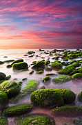 Long Exposure Art - Color Harmony by Jorge Maia