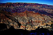Douglas Barnard - Color of the Canyon...