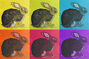 Wheel Drawings - Color Wheel Bunnies by Nancy Swearingen
