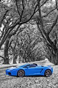 Oaks Framed Prints - Color Your World - Lamborghini Gallardo Framed Print by Steve Harrington