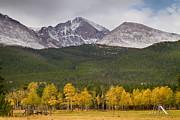 James BO  Insogna - Colorado