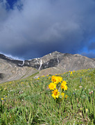 The Summit Art - Colorado Beauty by Aaron Spong