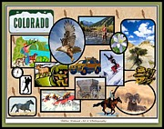 River Rafting Art Print Posters - Colorado Collage Poster by Bobbee Rickard