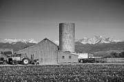 James BO  Insogna - Colorado Farming in Black and White
