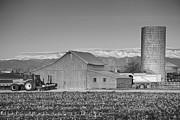 James BO  Insogna - Colorado Front Range Farming BW