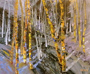 Forest Drawings Prints - Colorado Ghost Forest Print by Susan A Becker
