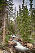 James BO  Insogna - Colorado Rocky Mountain Flowing Stream