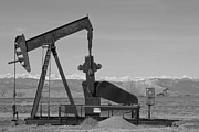 Pumpjack Posters - Colorado Rocky Mountain Oil Wells BW Poster by James Bo Insogna