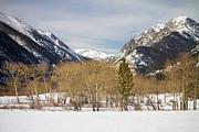 James BO  Insogna - Colorado Rocky Mountain Winter Horseshoe Park