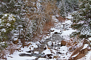 Winter Prints Photos - Colorado St Vrian Winter Scenic Landscape View by James Bo Insogna