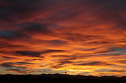 Daneen Rush Prints - Colorado Sunset Print by Daneen Rush