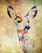 Steve McKinzie - Colored Doe