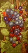 Vine Grapes Pastels Posters - Colored Grapes Poster by Joseph Hawkins