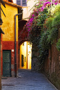 Portofino Italy Town Art Framed Prints - Colorful Alley in Portofino Framed Print by George Oze