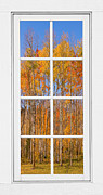 Room With A View Framed Prints - Colorful Aspen Tree View White Window Framed Print by James Bo Insogna