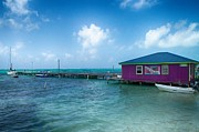 Hallmark Photos - Colorful Belize by Kristina Deane