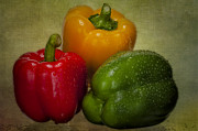 Food And Beverages Prints - Colorful Bell Peppers Print by Susan Candelario