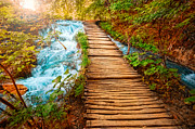 Autumn Landscape Pyrography Prints - Colorful Boardwalk Print by Boon Mee