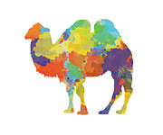 Trilby Cole - Colorful Camel-...