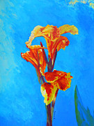 Canna Painting Framed Prints - Colorful Canna Framed Print by Margaret Saheed