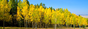 Colorado Photography Photos - Colorful Colorado 2 by Brian Harig