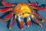 Turquoise Pastels Posters - Colorful Crab Poster by Stephen Anderson
