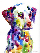Whimsical Dog Breed Art Framed Prints - Colorful Dalmatian puppy dog portrait art Framed Print by Svetlana Novikova