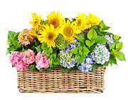 Basket Pyrography Prints - Colorful Flowers in Basket Print by Boon Mee