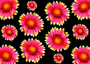 Retro Antique Originals - Colorful flowers  by Tommy Hammarsten