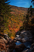 New England Prints - Colorful Foliage falls Print by Jeff Folger