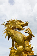 Tosporn Preede - Colorful golden dragon...