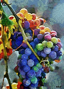 Fruits Digital Art - Colorful grapes by Dragica  Micki Fortuna